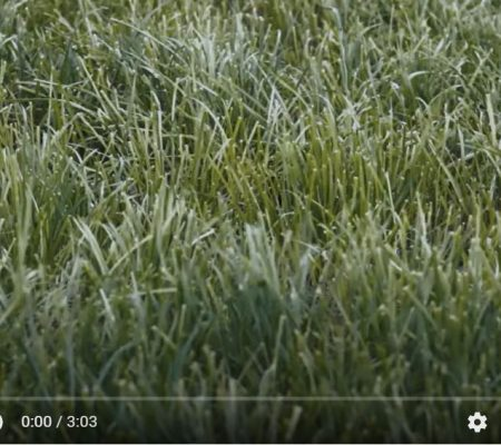 Water Resources - ERT Youtube Thumbnail